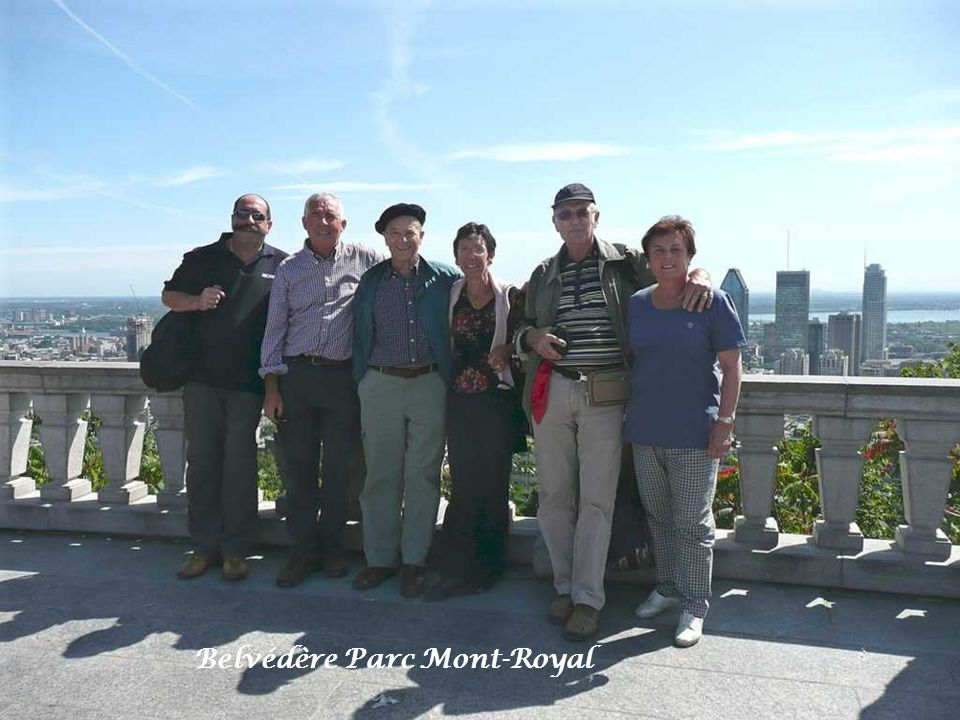 Rencontre roux mont royal