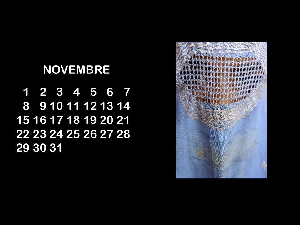 NOVEMBRE 01 02 03 04 05 06 07 08 09 10 11 12 13 14 15 16 17 18 19 20 21 22 23 24 25 26 27 28 29 30 31.