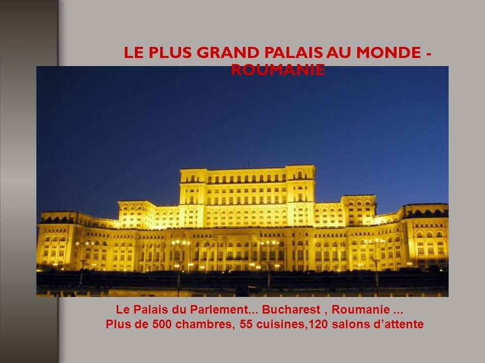 Plus de 500 chambres, 55 cuisines,120 salons d'attente