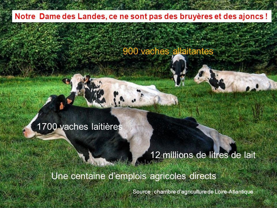Pr s de nantes notre dame des landes un projet d - Chambre d agriculture offre d emploi ...