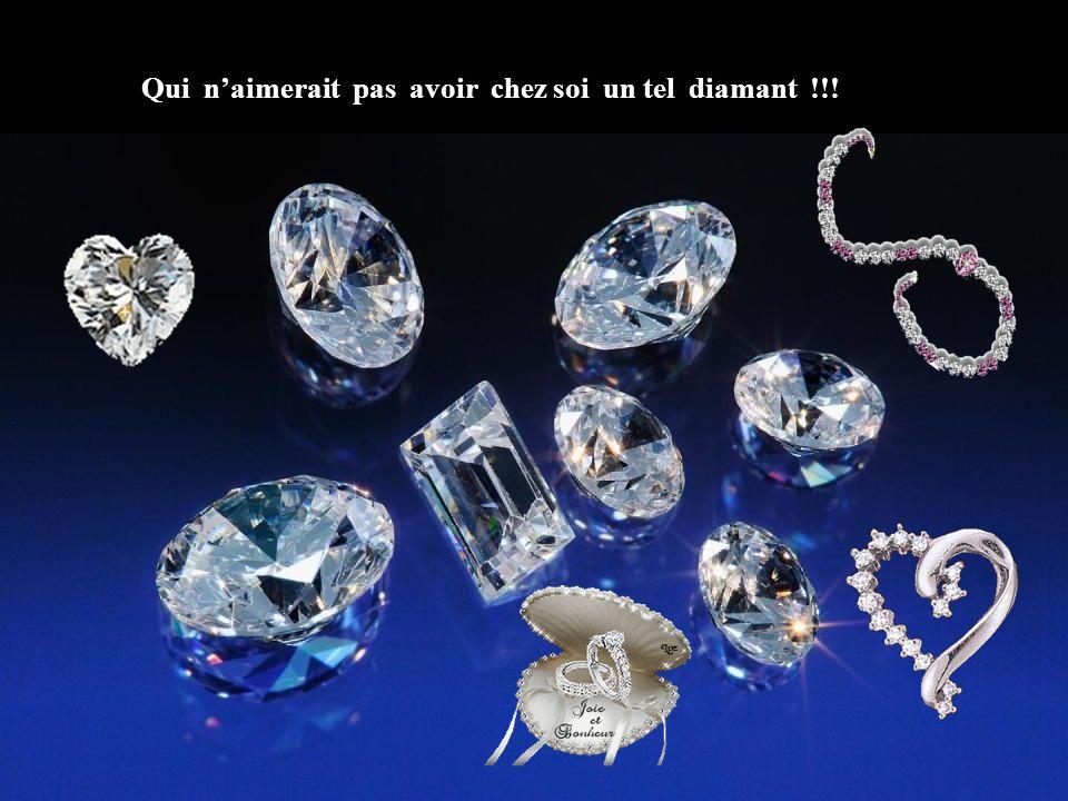 Qui n'aimerait pas avoir chez soi un tel diamant !!!