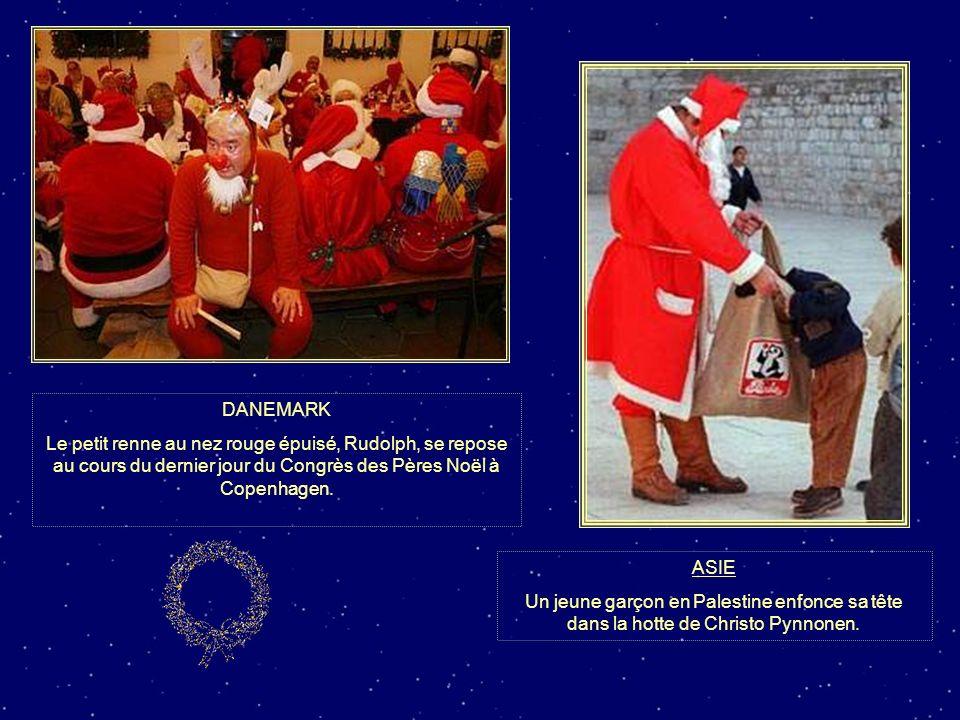 DANEMARK Le petit renne au nez rouge épuisé, Rudolph, se repose au cours du dernier jour du Congrès des Pères Noël à Copenhagen.