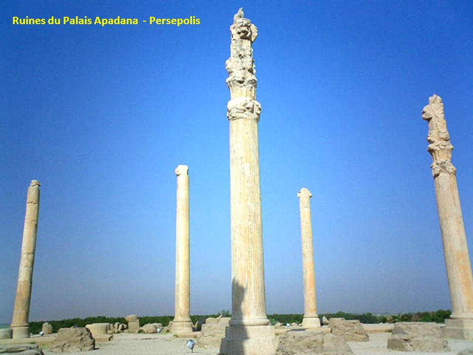 Ruines du Palais Apadana - Persepolis
