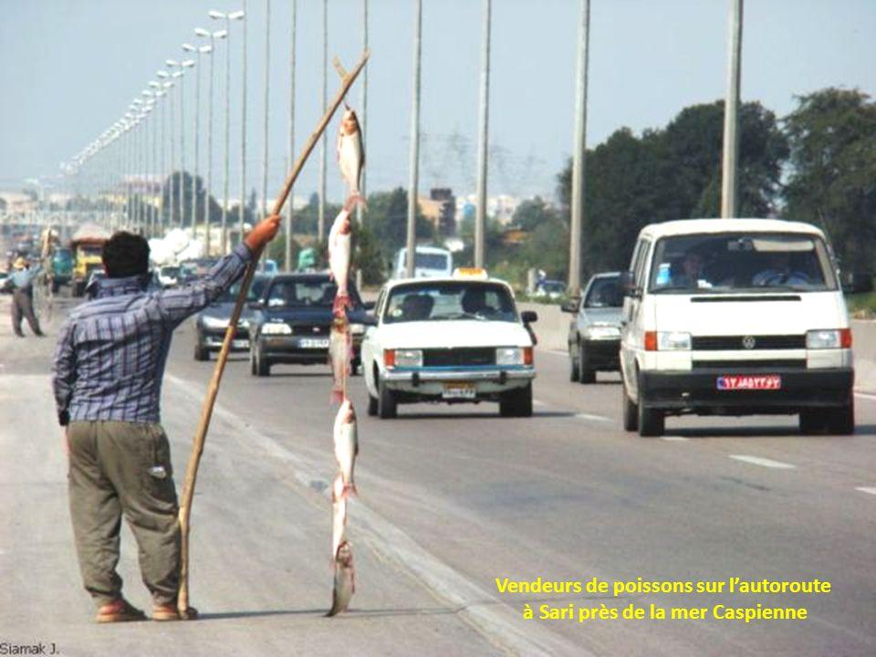Vendeurs de poissons sur l'autoroute à Sari près de la mer Caspienne