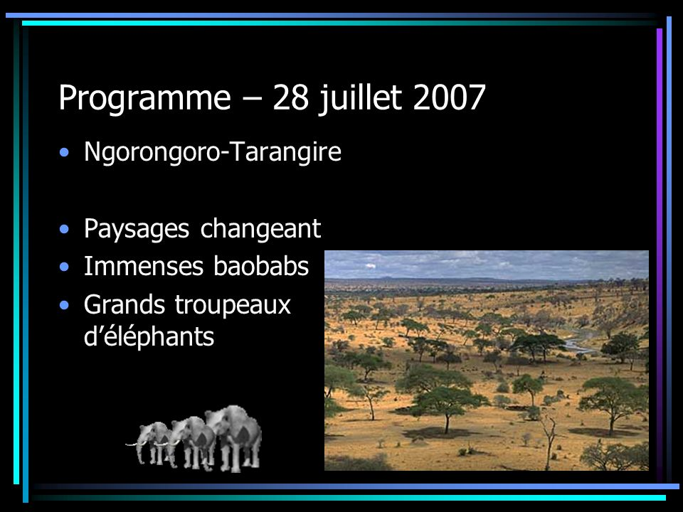 Programme – 28 juillet 2007 Ngorongoro-Tarangire Paysages changeant