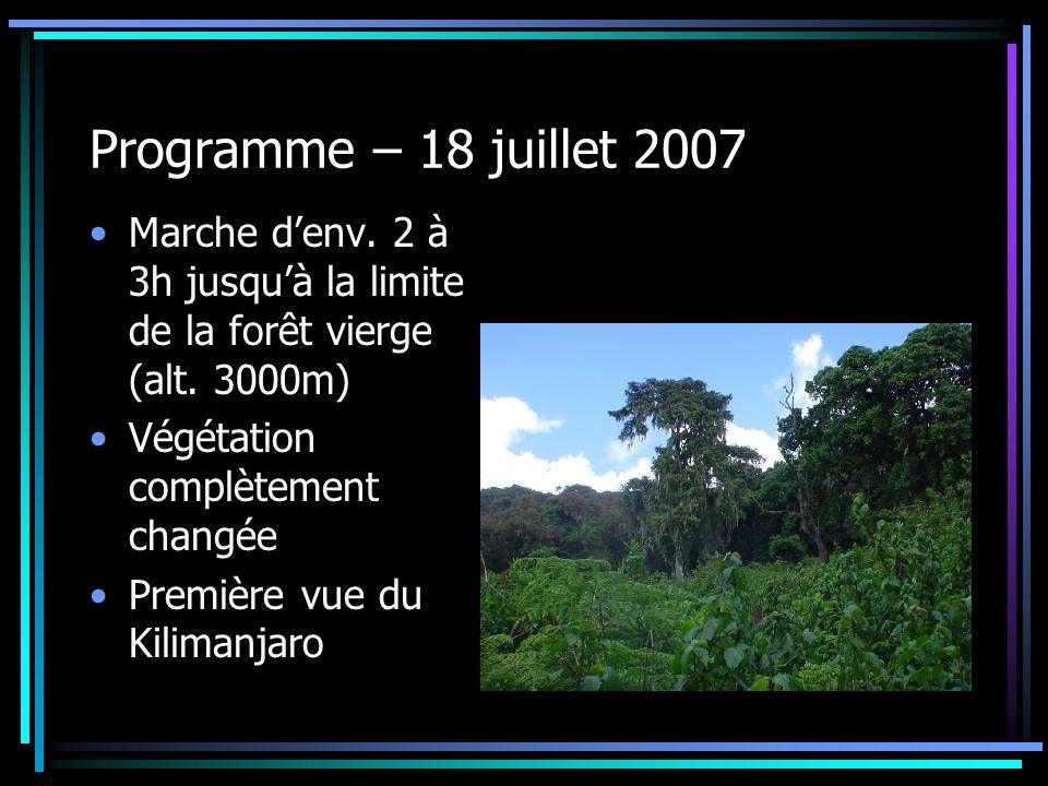Programme – 18 juillet 2007 Marche d'env. 2 à 3h jusqu'à la limite de la forêt vierge (alt. 3000m) Végétation complètement changée.