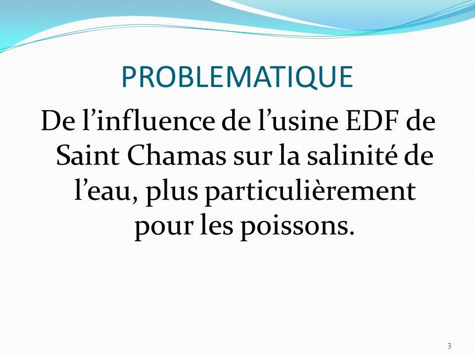 PROBLEMATIQUE De l'influence de l'usine EDF de Saint Chamas sur la salinité de l'eau, plus particulièrement pour les poissons.