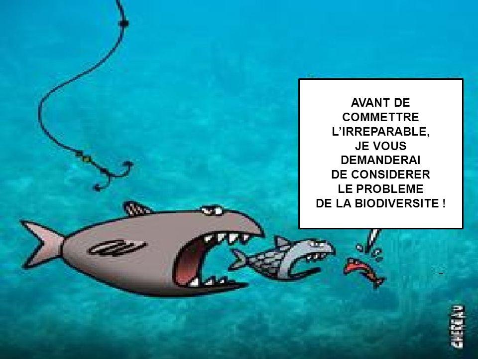 AVANT DE COMMETTRE L'IRREPARABLE, JE VOUS DEMANDERAI DE CONSIDERER LE PROBLEME DE LA BIODIVERSITE !