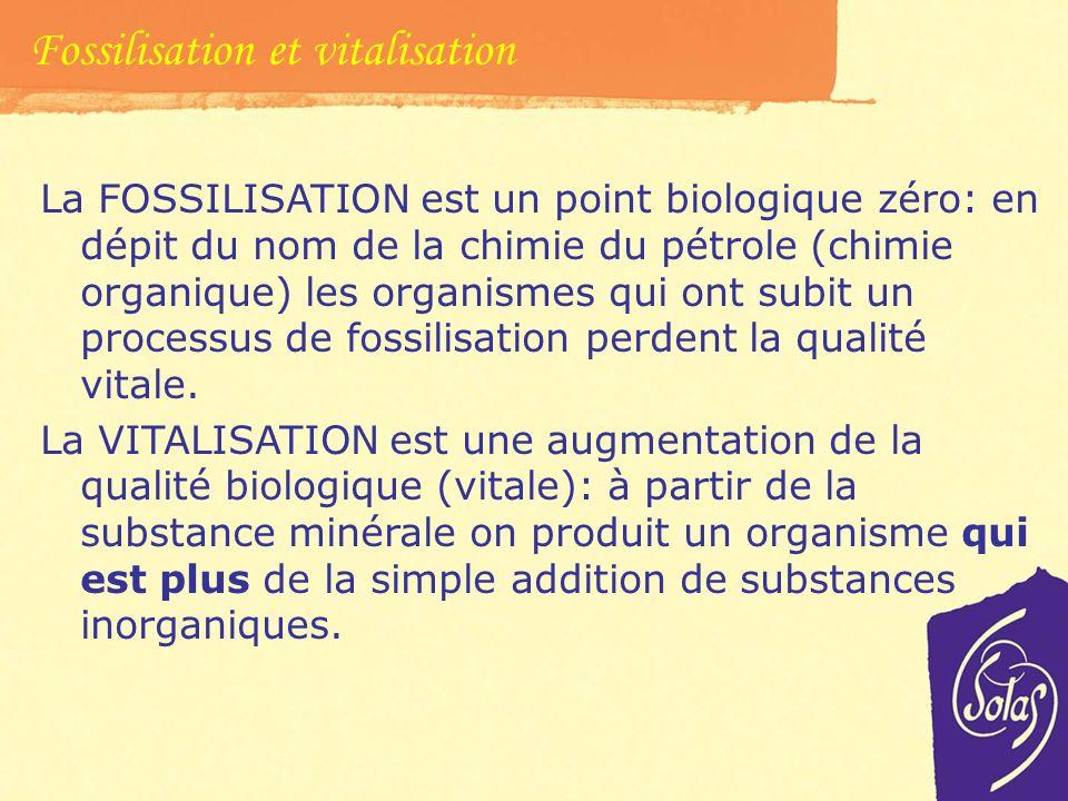 Fossilisation et vitalisation