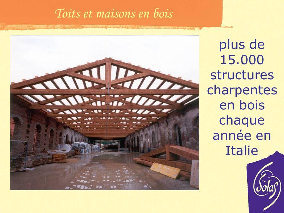 Toits et maisons en bois