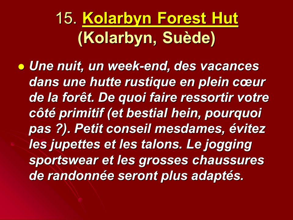 15. Kolarbyn Forest Hut (Kolarbyn, Suède)