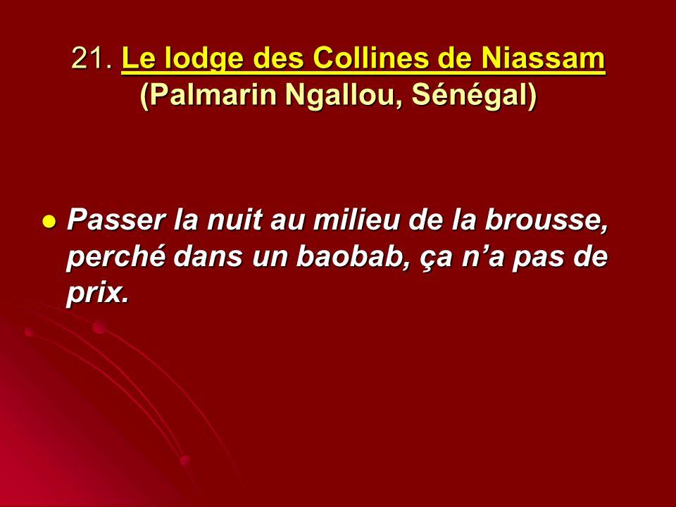21. Le lodge des Collines de Niassam (Palmarin Ngallou, Sénégal)