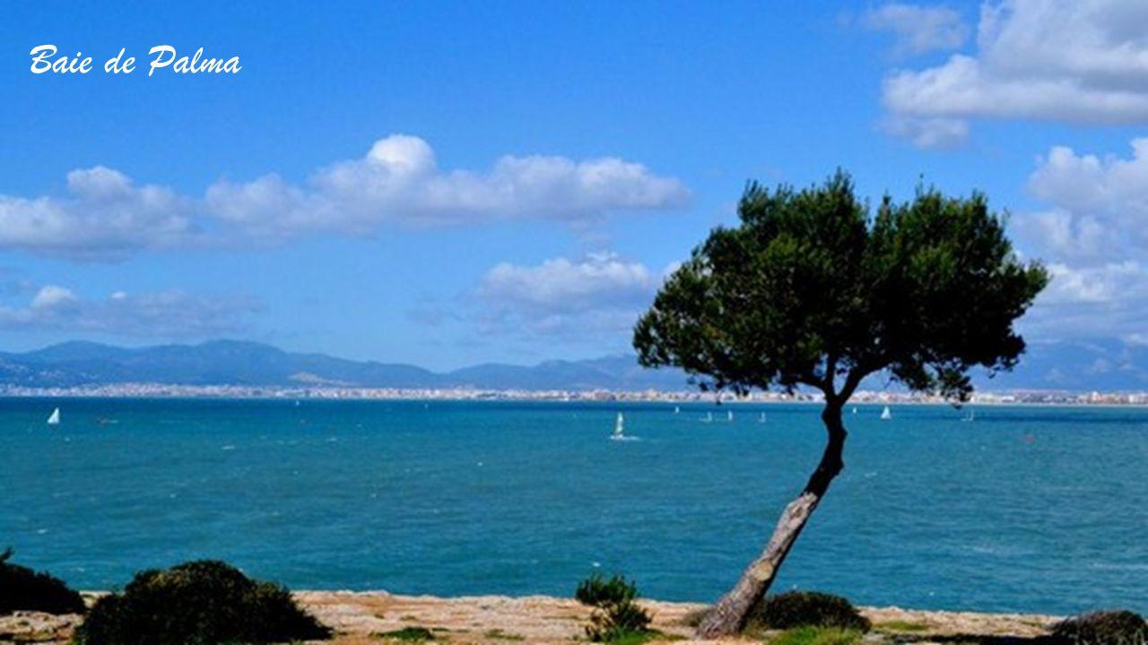 Baie de Palma