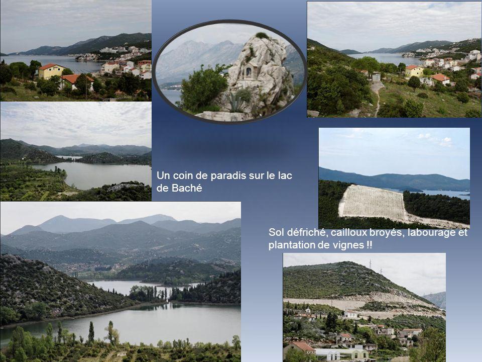 Un coin de paradis sur le lac de Baché