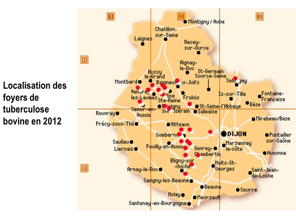 Localisation des foyers de tuberculose bovine en 2012
