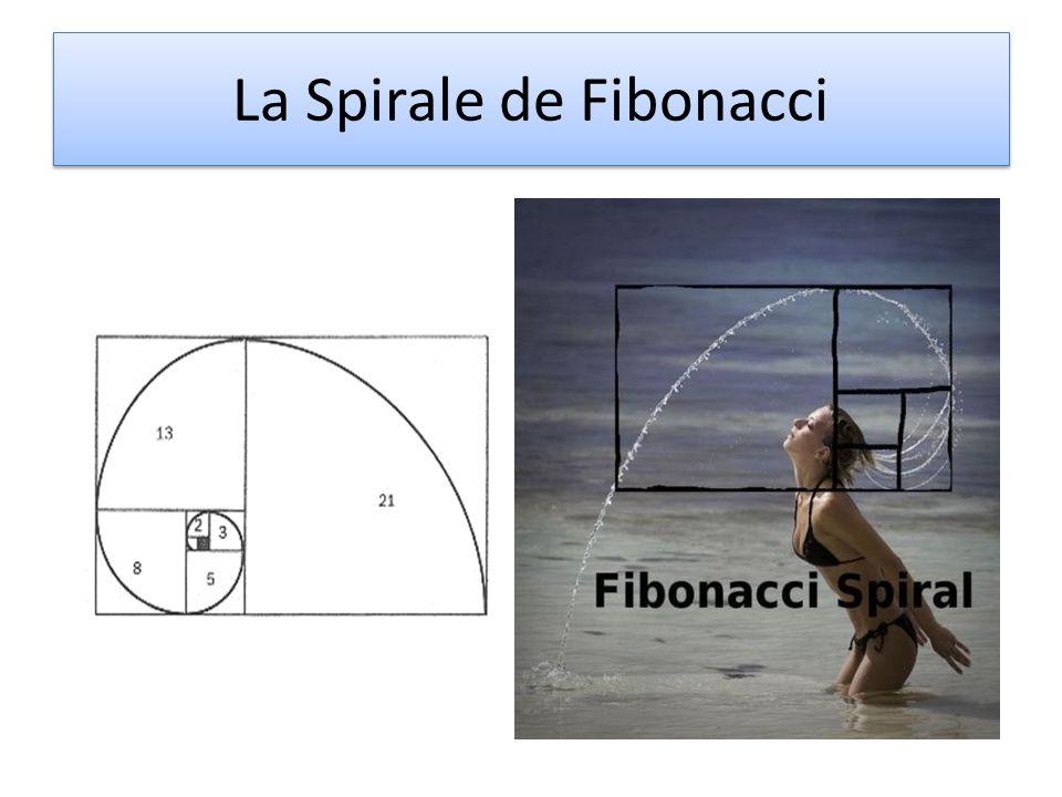 La Spirale de Fibonacci