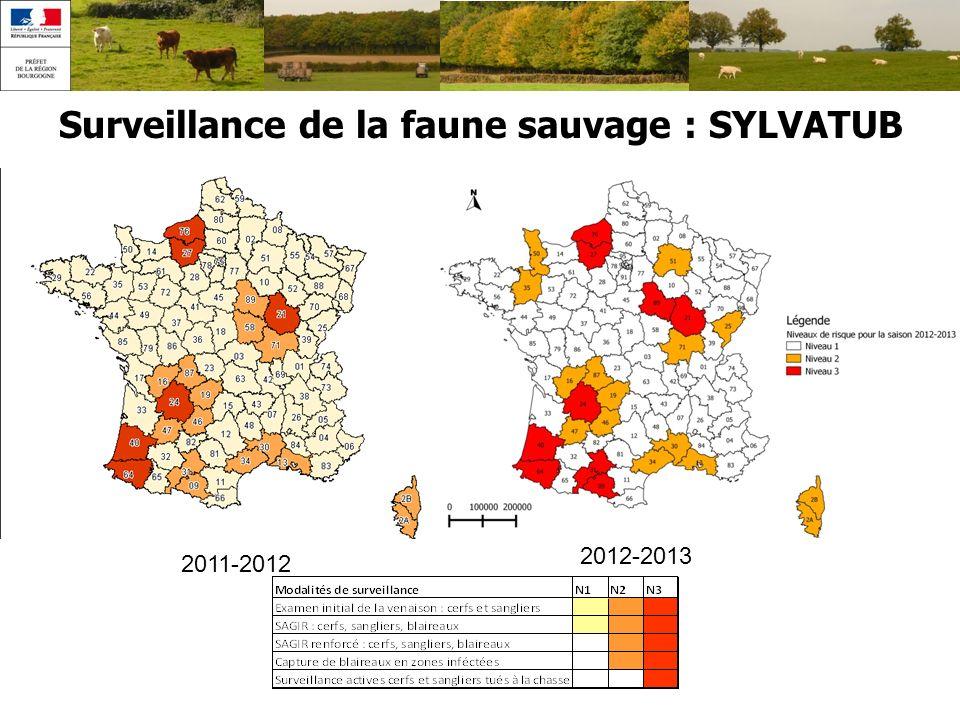 Surveillance de la faune sauvage : SYLVATUB