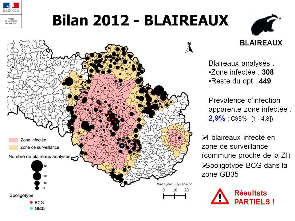 Bilan 2012 - BLAIREAUX BLAIREAUX Blaireaux analysés :