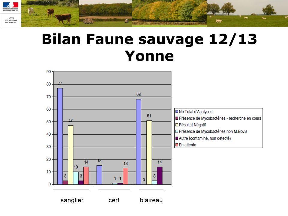 Bilan Faune sauvage 12/13 Yonne