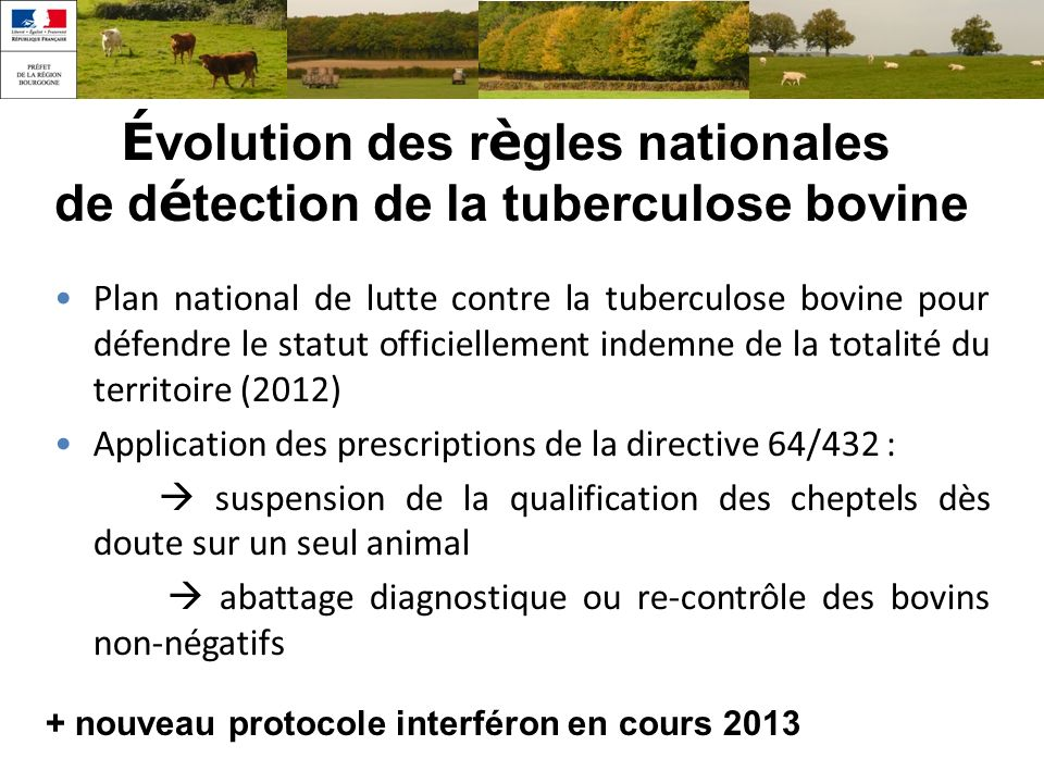 Évolution des règles nationales de détection de la tuberculose bovine