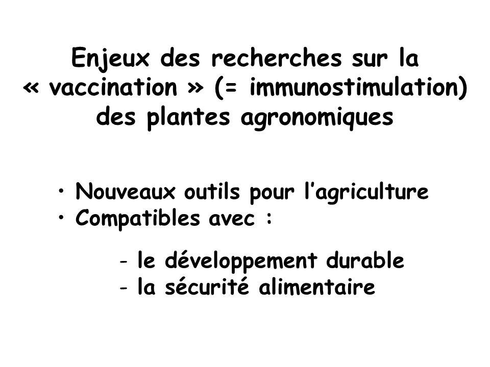 Enjeux des recherches sur la « vaccination » (= immunostimulation) des plantes agronomiques