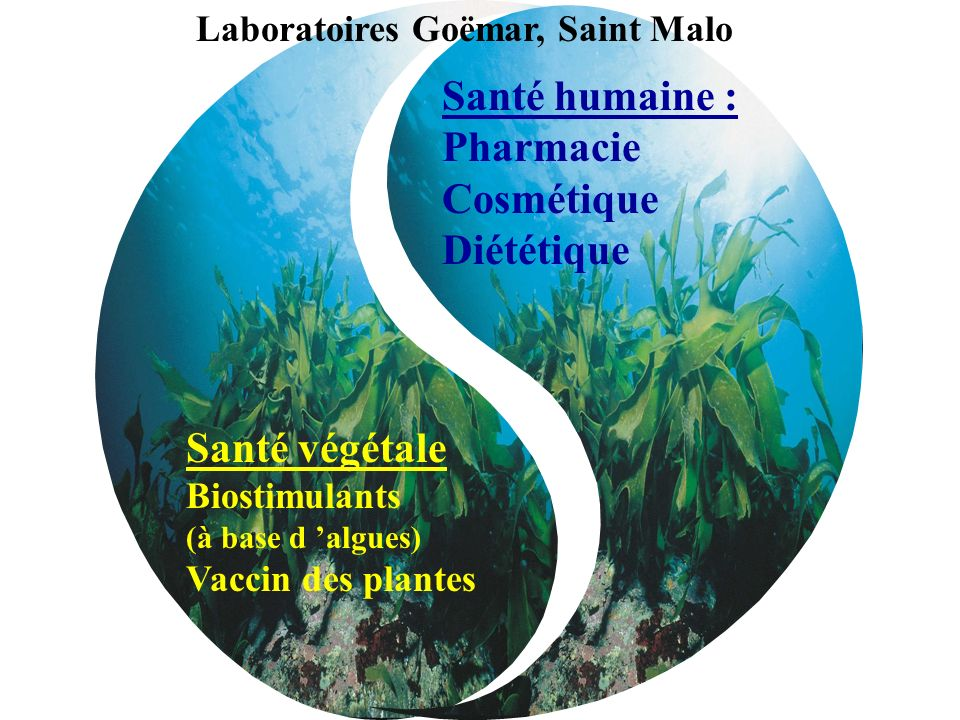 Laboratoires Goëmar, Saint Malo