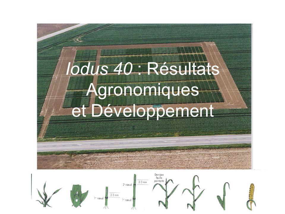 Iodus 40 : Résultats Agronomiques et Développement