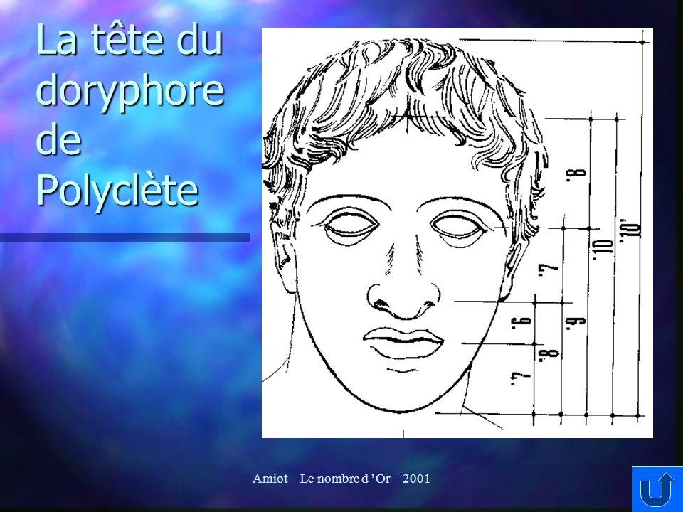 La tête du doryphore de Polyclète
