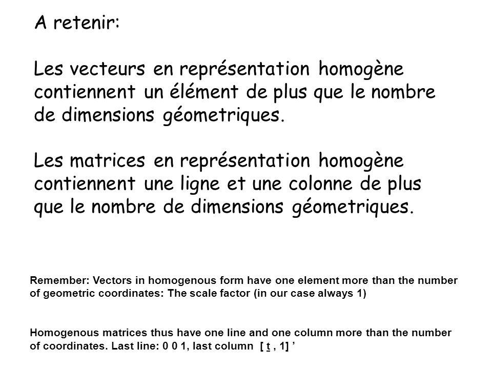 Les vecteurs en représentation homogène