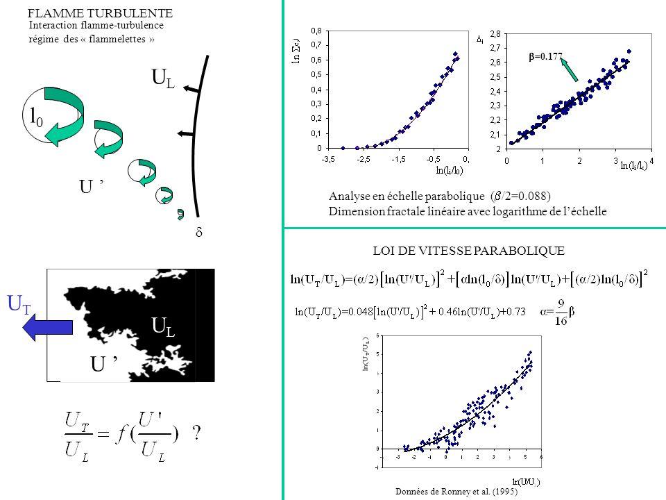 U ' UL l0 d UT UL U ' Analyse en échelle parabolique (b/2=0.088)