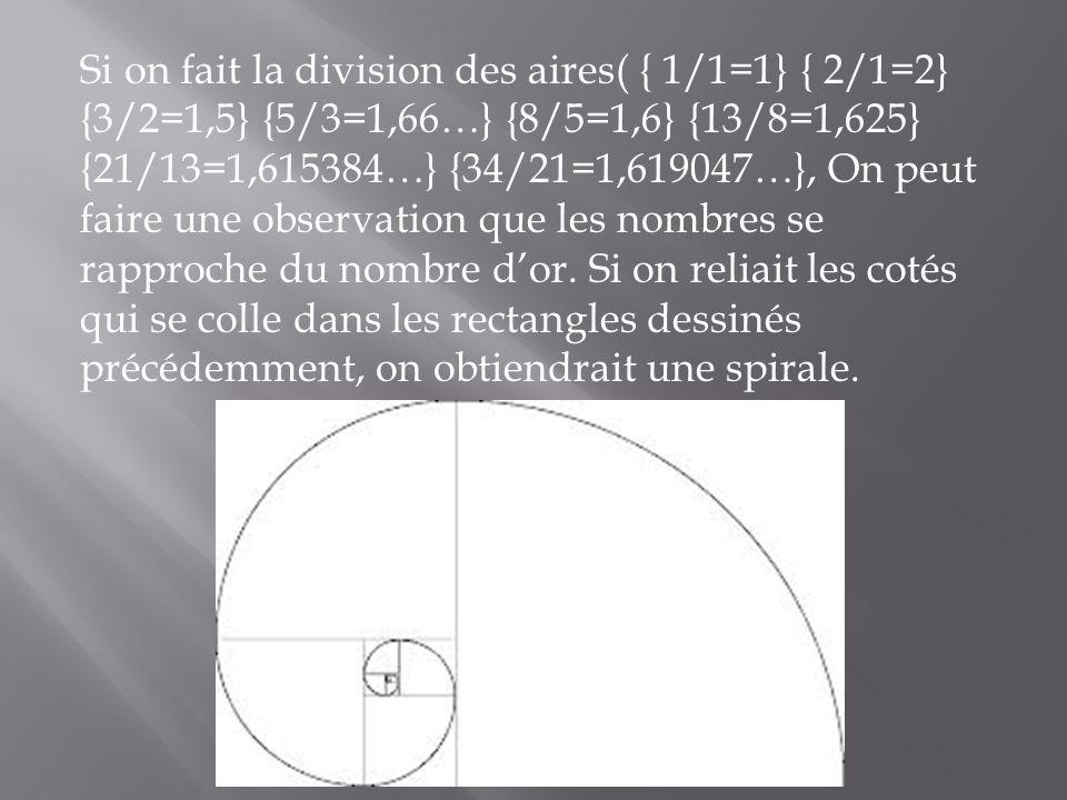 Si on fait la division des aires( { 1/1=1} { 2/1=2} {3/2=1,5} {5/3=1,66…} {8/5=1,6} {13/8=1,625} {21/13=1,615384…} {34/21=1,619047…}, On peut faire une observation que les nombres se rapproche du nombre d'or.