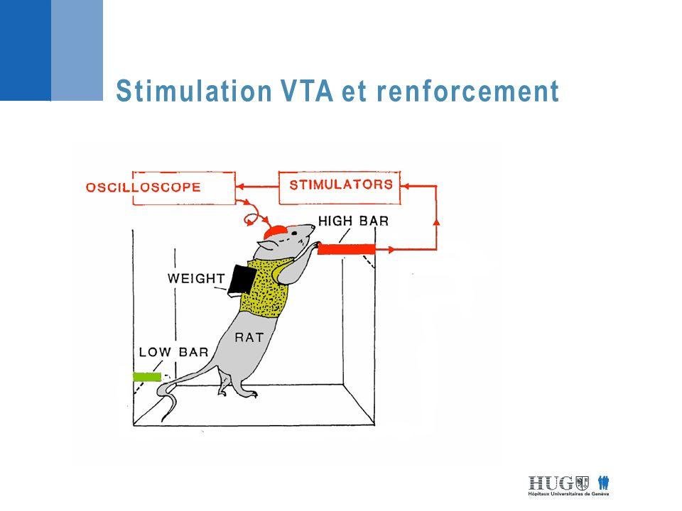 Stimulation VTA et renforcement