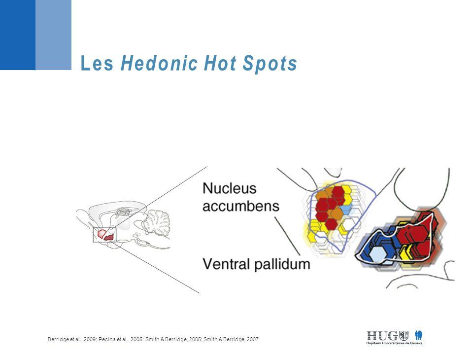 Les Hedonic Hot Spots Berridge et al., 2009; Pecina et al., 2005; Smith & Berridge, 2005; Smith & Berridge, 2007.