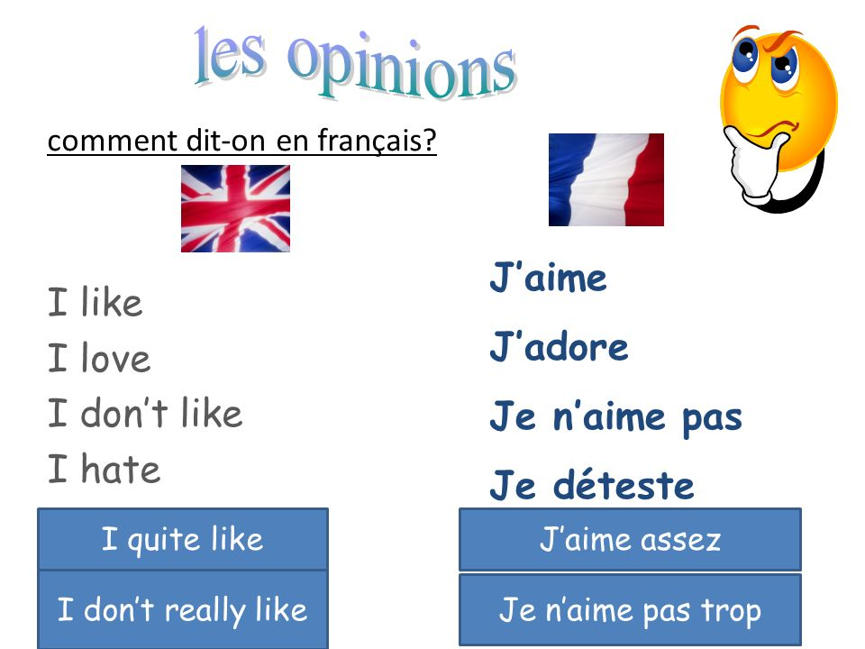 les opinions I like I love I don't like I hate J'aime J'adore