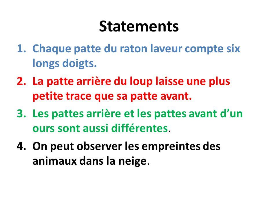 Statements Chaque patte du raton laveur compte six longs doigts.