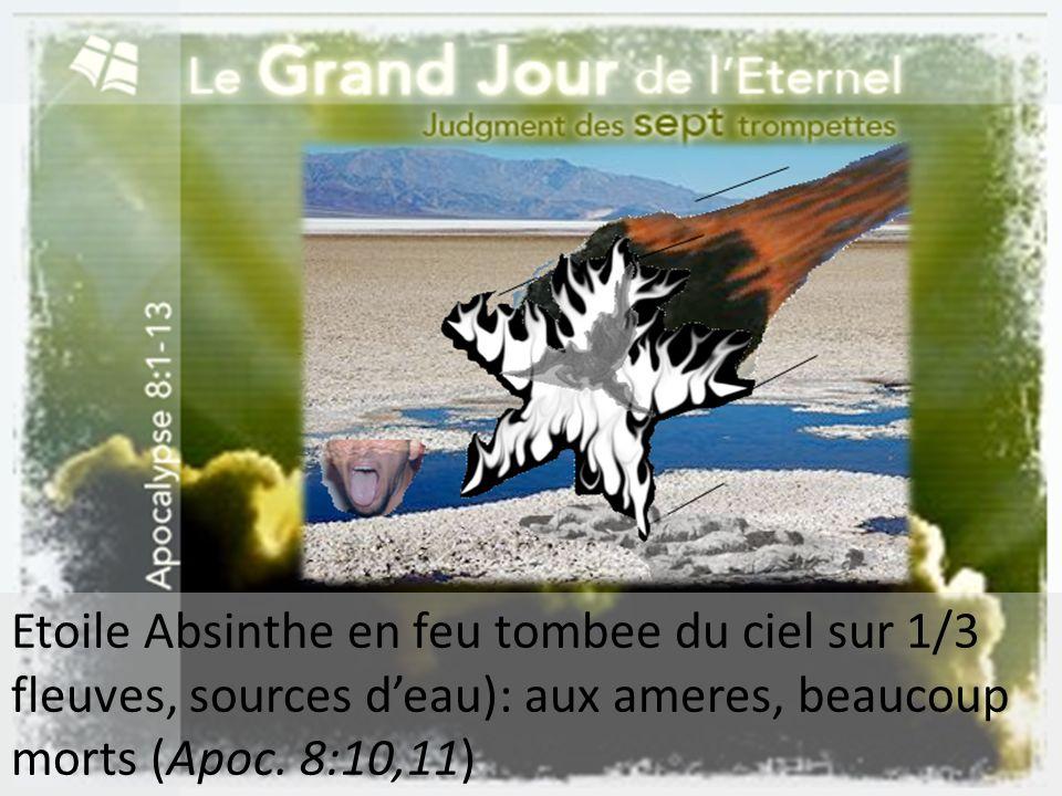 Etoile Absinthe en feu tombee du ciel sur 1/3 fleuves, sources d'eau): aux ameres, beaucoup morts (Apoc.