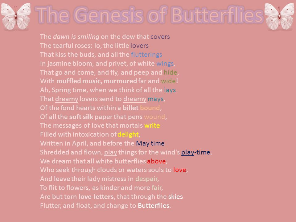 The Genesis of Butterflies