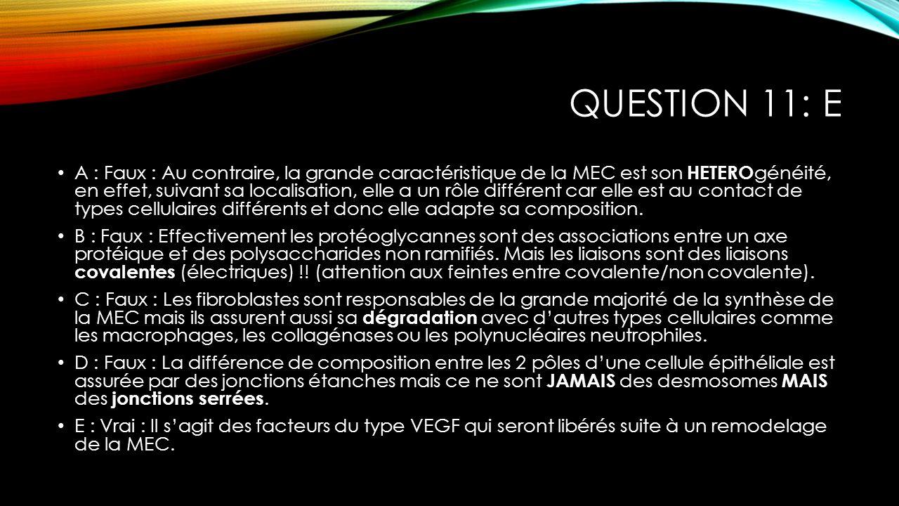 Question 11: E