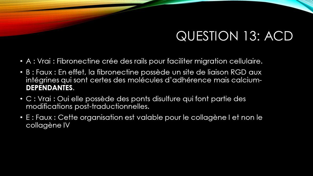Question 13: ACD A : Vrai : Fibronectine crée des rails pour faciliter migration cellulaire.