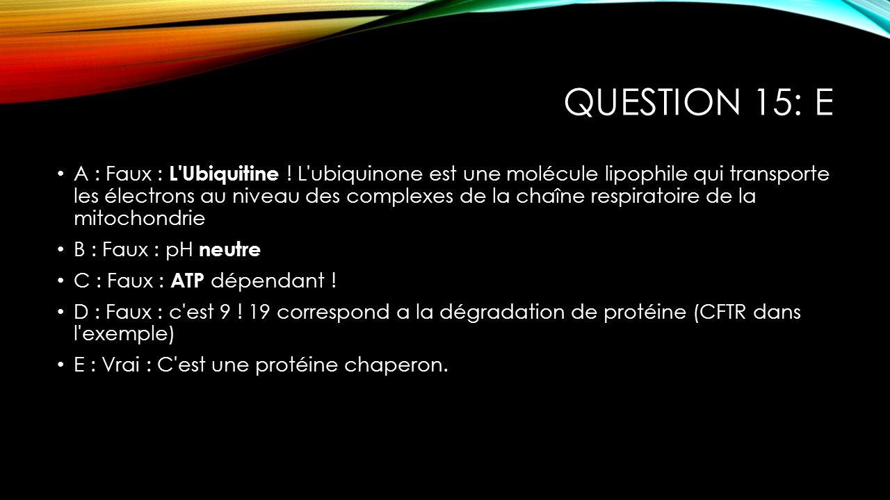 Question 15: E