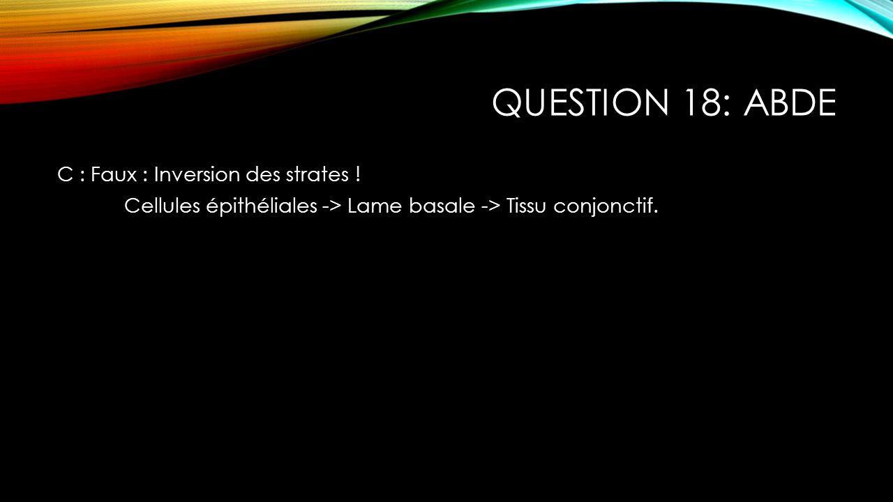 Question 18: ABDE C : Faux : Inversion des strates .
