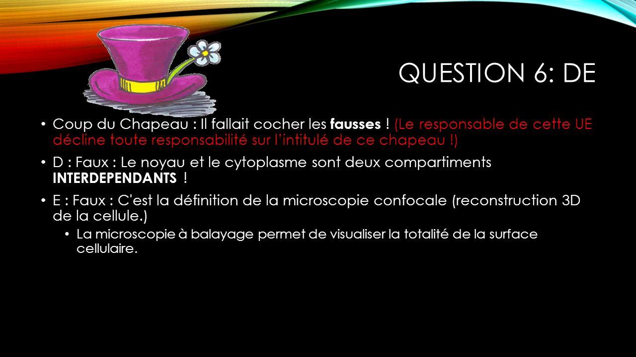 Question 6: DE
