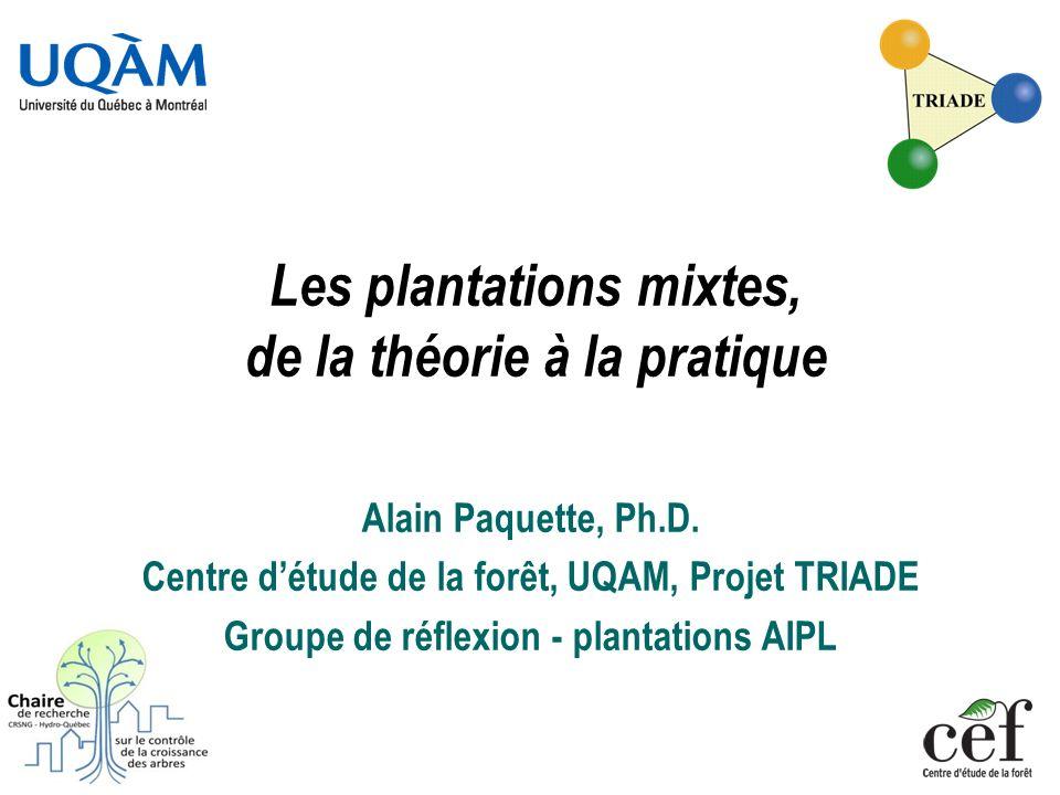 Les plantations mixtes, de la théorie à la pratique