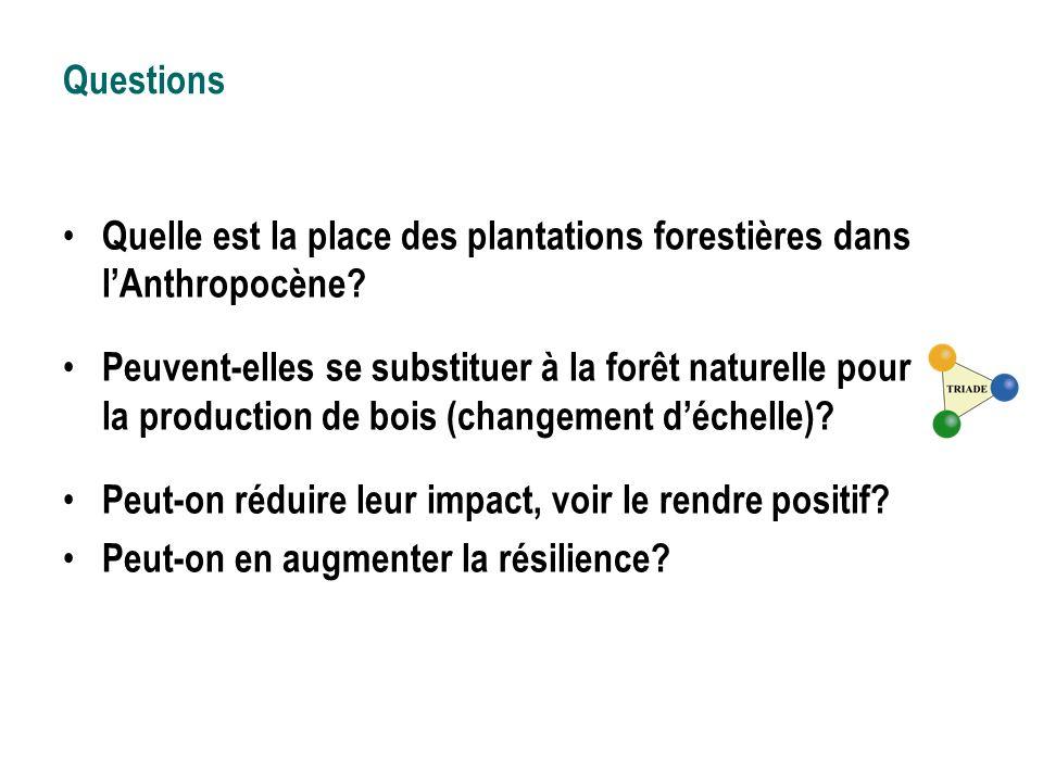 Quelle est la place des plantations forestières dans l'Anthropocène