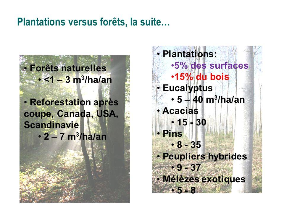 Plantations versus forêts, la suite…