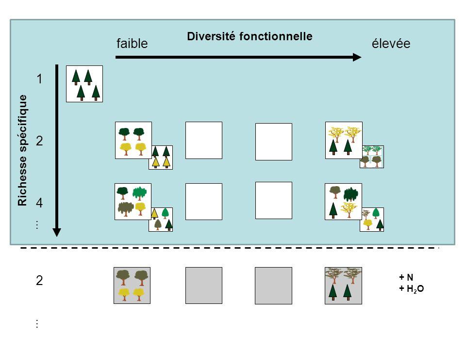faible élevée 1 2 4 Diversité fonctionnelle Richesse spécifique … …