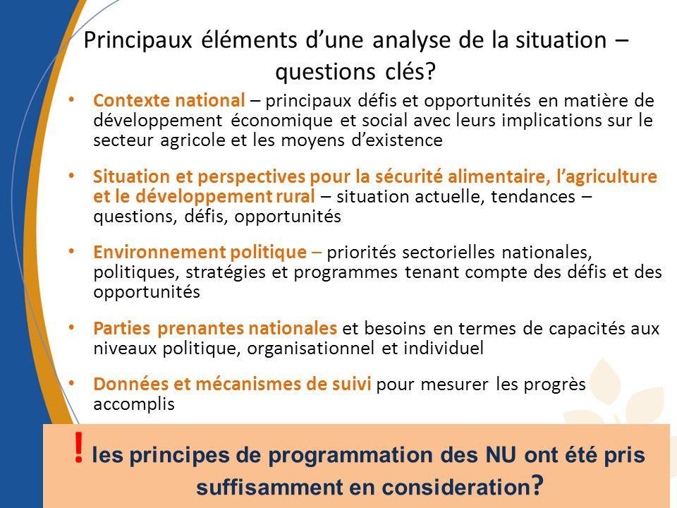 Principaux éléments d'une analyse de la situation – questions clés