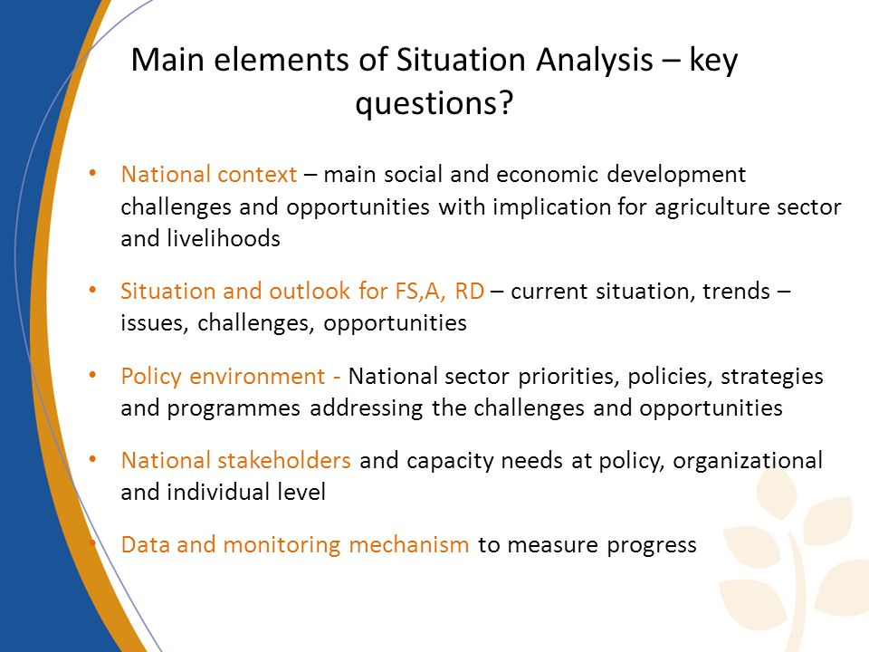 Main elements of Situation Analysis – key questions