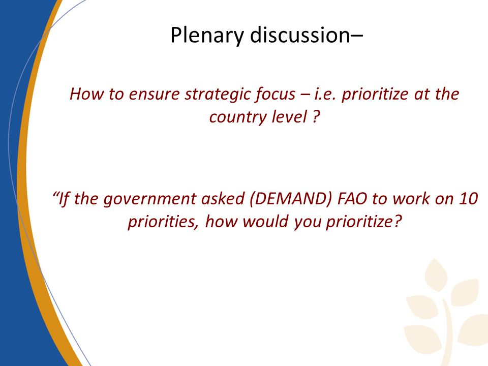 Plenary discussion–