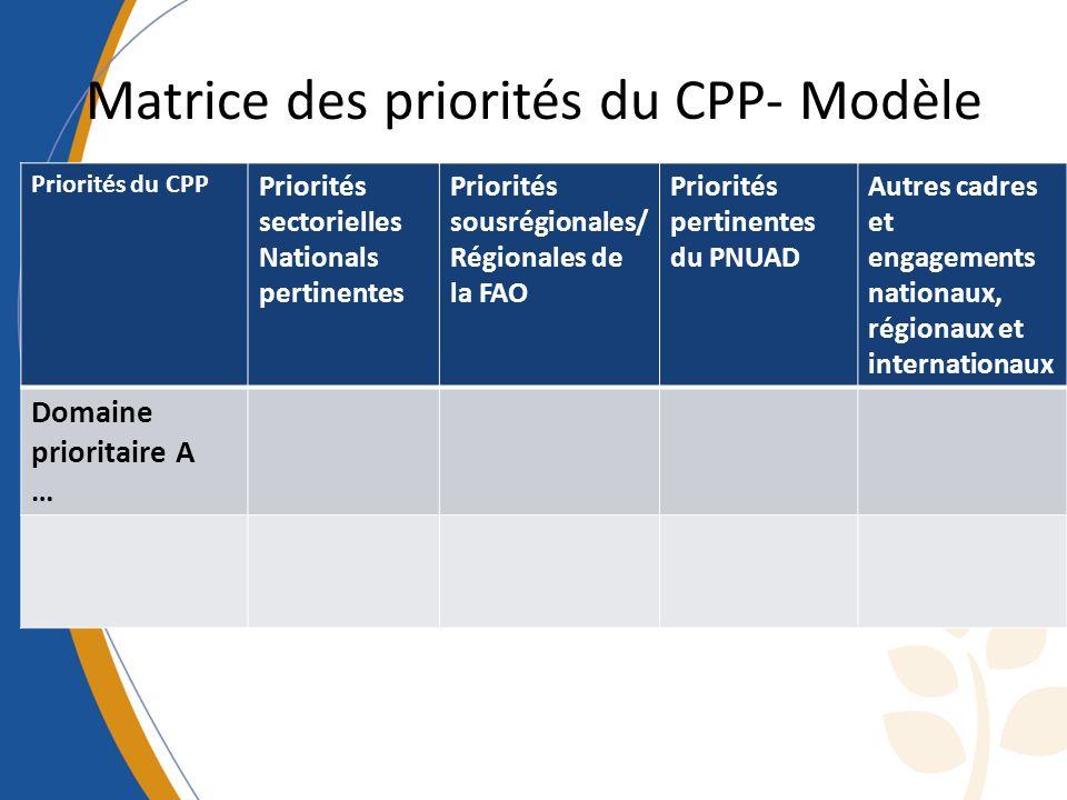 Matrice des priorités du CPP- Modèle